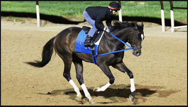 Super Stock in Kentucky Derby Direction